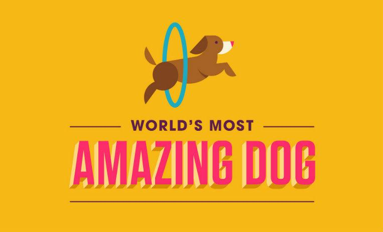 Facebook Watch, serie World's Most Amazing Dog, serie de facebook perros, serie interactiva de perros, concurso de perros facebook,